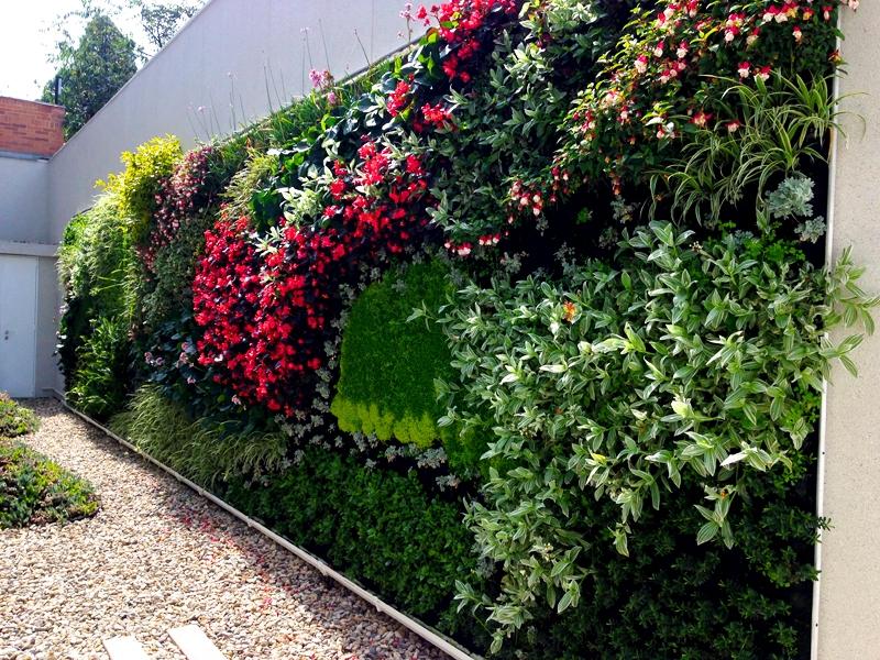 Jardines verticales cooperativa de trabajo arc ngel ltda for Muros de plantas verticales
