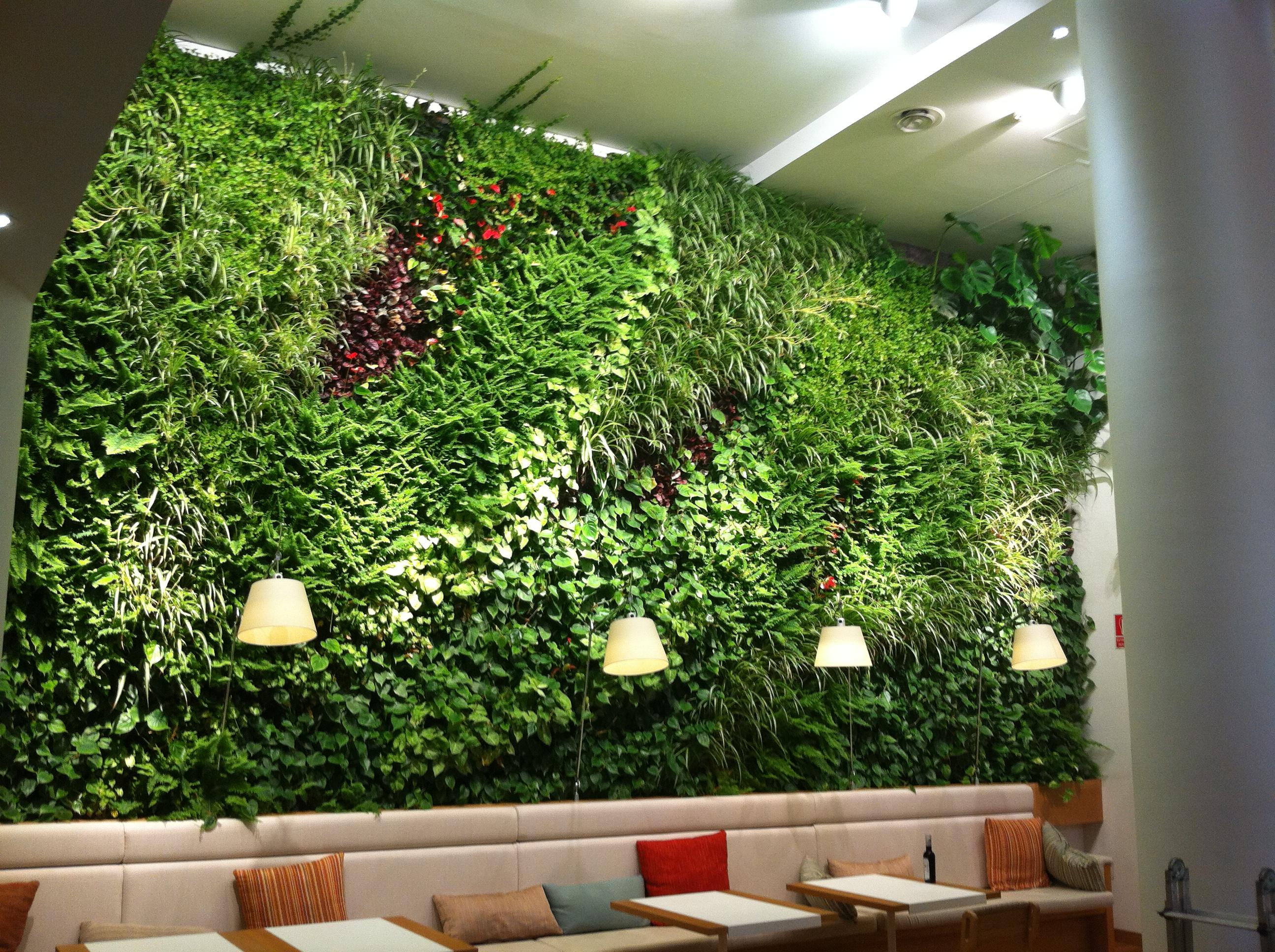 Jardines verticales cooperativa de trabajo arc ngel ltda for Plantas para muros verdes verticales