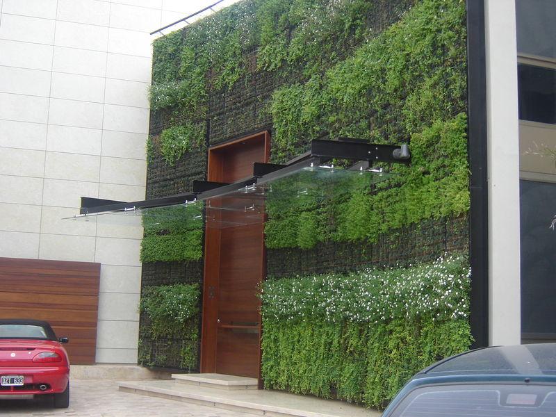 Jardines verticales cooperativa de trabajo arc ngel ltda for Plantas para muros verdes exteriores