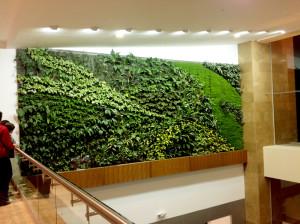 Jardines verticales cooperativa de trabajo arc ngel ltda for Jardines verticales construccion